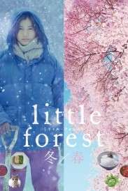 Little Forest: Winter/Spring (2015)